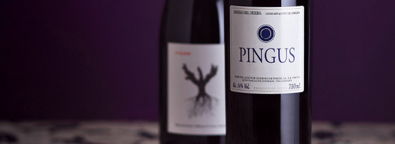 10 Things Every #Wine Lover Should Know About Dominio de Pingus